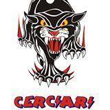 cerciari-racing-school-5921781